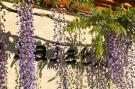 Vakantiehuis  - : Villa Le Palatin