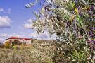 Vakantiehuis  - : La Casa dei Cinque Olivi