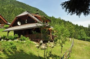 Vakantiehuis  - : Almhütte im Walde