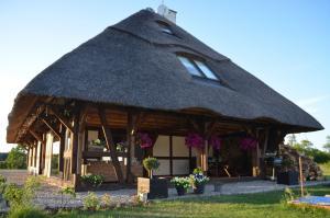 Vakantiehuis  - : Mussur House