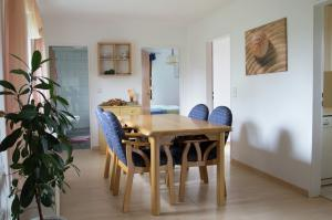 Vakantiehuis  - : Ströhler